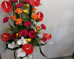 Infiniment Fleurs - Landerneau - DECOR DE BUFFET 2