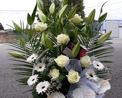 Infiniment Fleurs - Landerneau - DECOR DE BUFFET 1