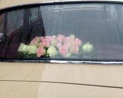Infiniment Fleurs - Landerneau - DECORATION DE VOITURE 9C