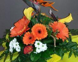 Infiniment Fleurs - Landerneau - Bouquet bulle avec une légère hauteur