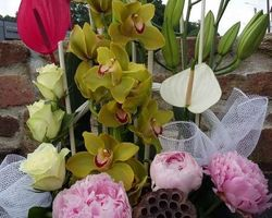 Infiniment Fleurs - Landerneau - Corbeille 1