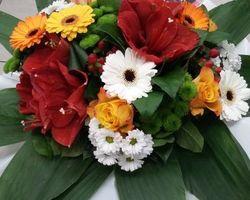 Infiniment Fleurs - Landerneau - Bouquet bulle 7