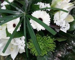 Infiniment Fleurs - Landerneau - Bouquet bulle 8