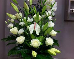 Infiniment Fleurs - Landerneau -Arrangement de fleurs +  plant de phalaenopsis, le tout dans un panier