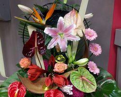 Infiniment Fleurs - Landerneau - Composition Exotique 1